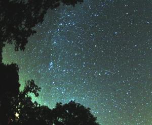 Perseid_meteor_2007
